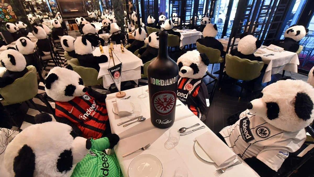 Плюшевые панды в ресторане: креативный протест в Германии – видео