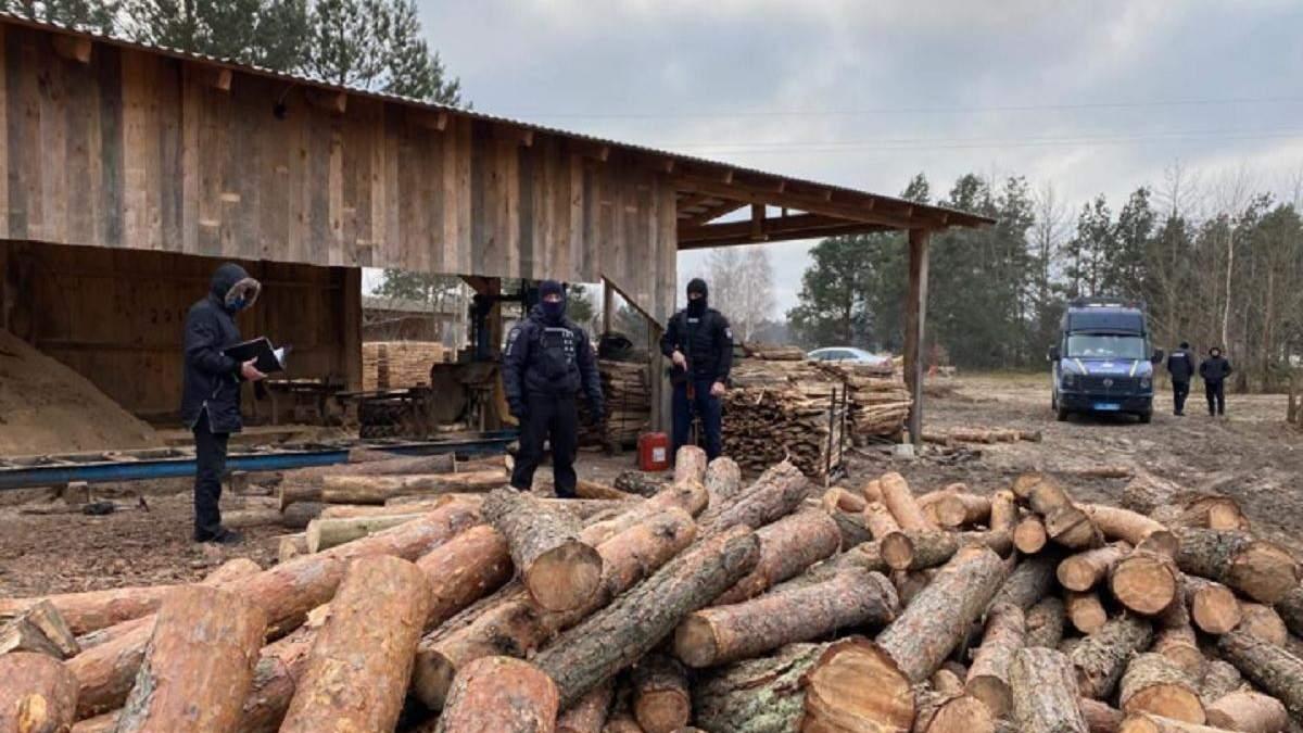 На Волыни проводят обыски по незаконной порубке леса