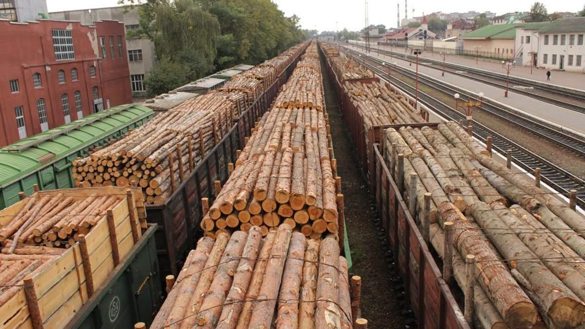 Арбитраж вынес решение по делу Украины с ЕС относительно леса-кругляка