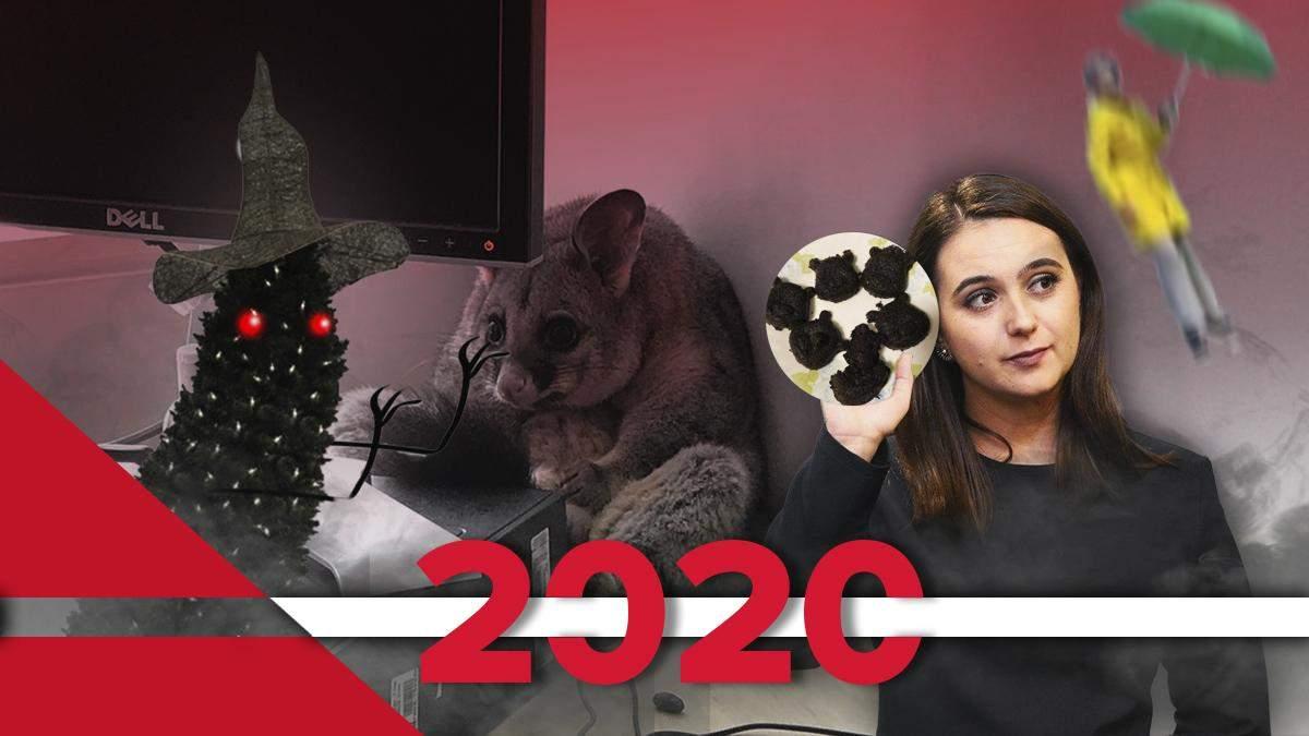 Кращі меми 2020 року: підбірка кращих мемів за рік