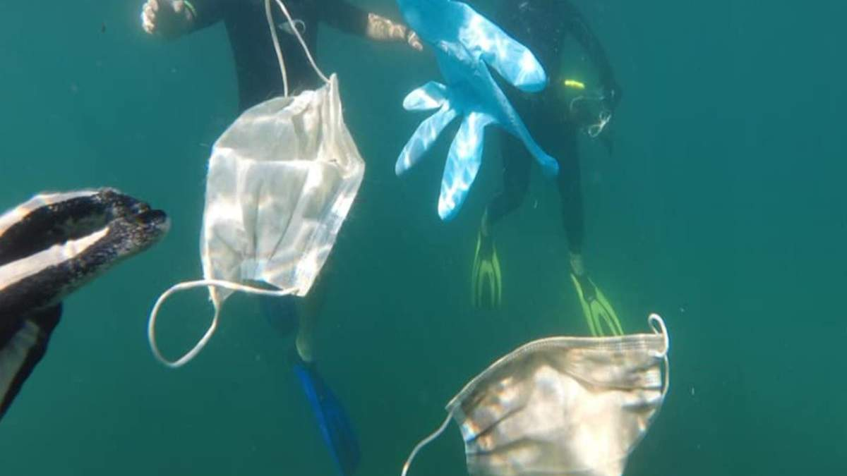 У 2020 році в океани потрапило понад 1,5 мільярда масок