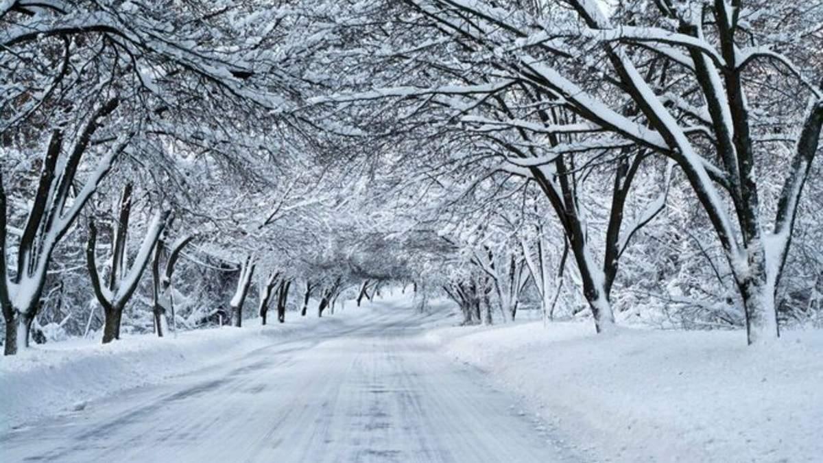 Чи надовго в Україні сніг та мороз: прогноз синоптиків