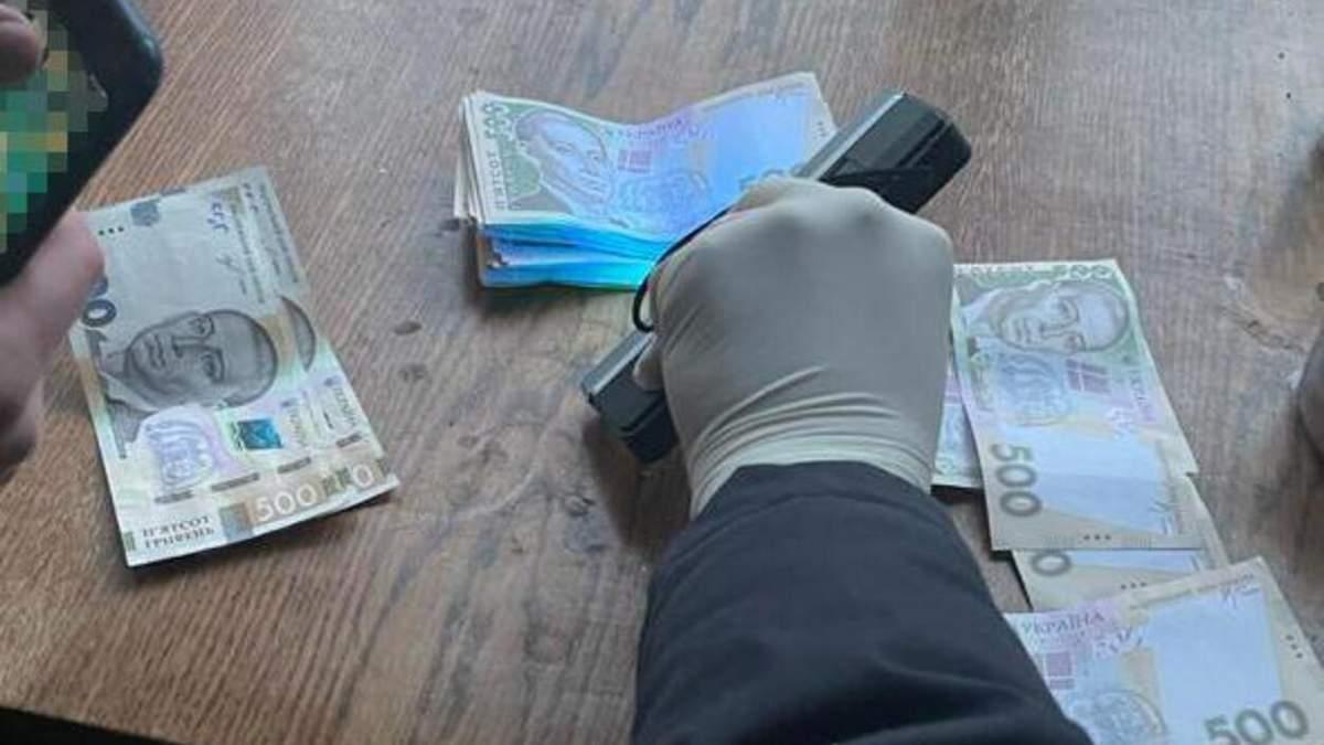 Взял 70 тысяч гривен взятки: на Львовщине задержали руководителя лесхоза - фото