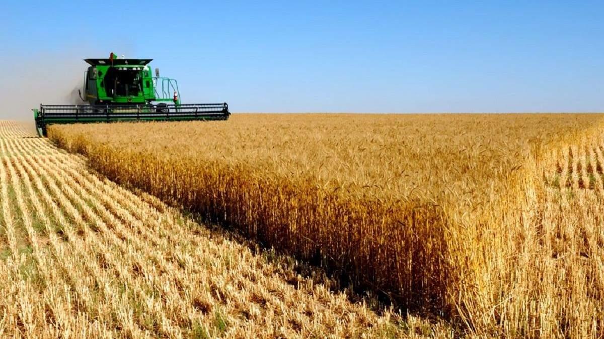 Из-за влияния олигархов на тарифы УЗ фермеры теряют до 7 долларов на тонне зерна, – Слободяник
