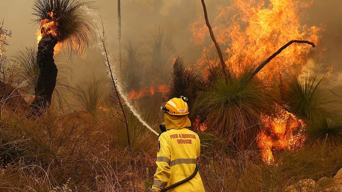 В Австралії спалахнули масштабні пожежі: сотні людей евакуюють