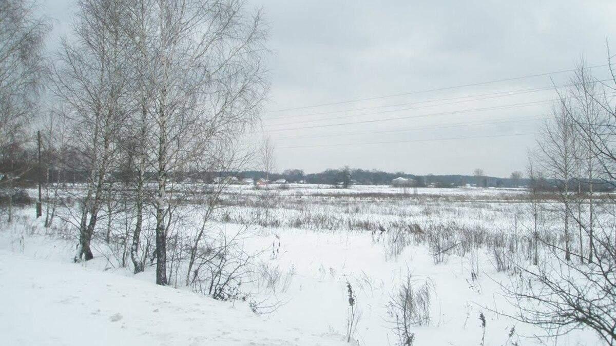 На Волині жінка замерзла насмерть посеред поля