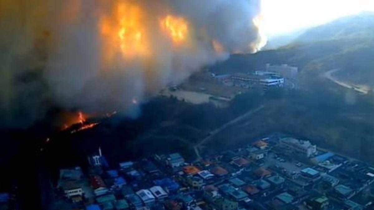 В Южной Корее - масштабные пожары: сгорело более 250 гектаров леса