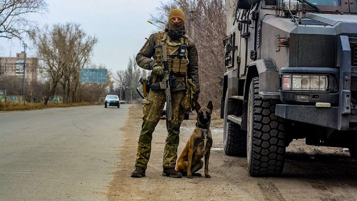 Собака допоміг відшукати схрон боєприпасів у Авдіївці: фото