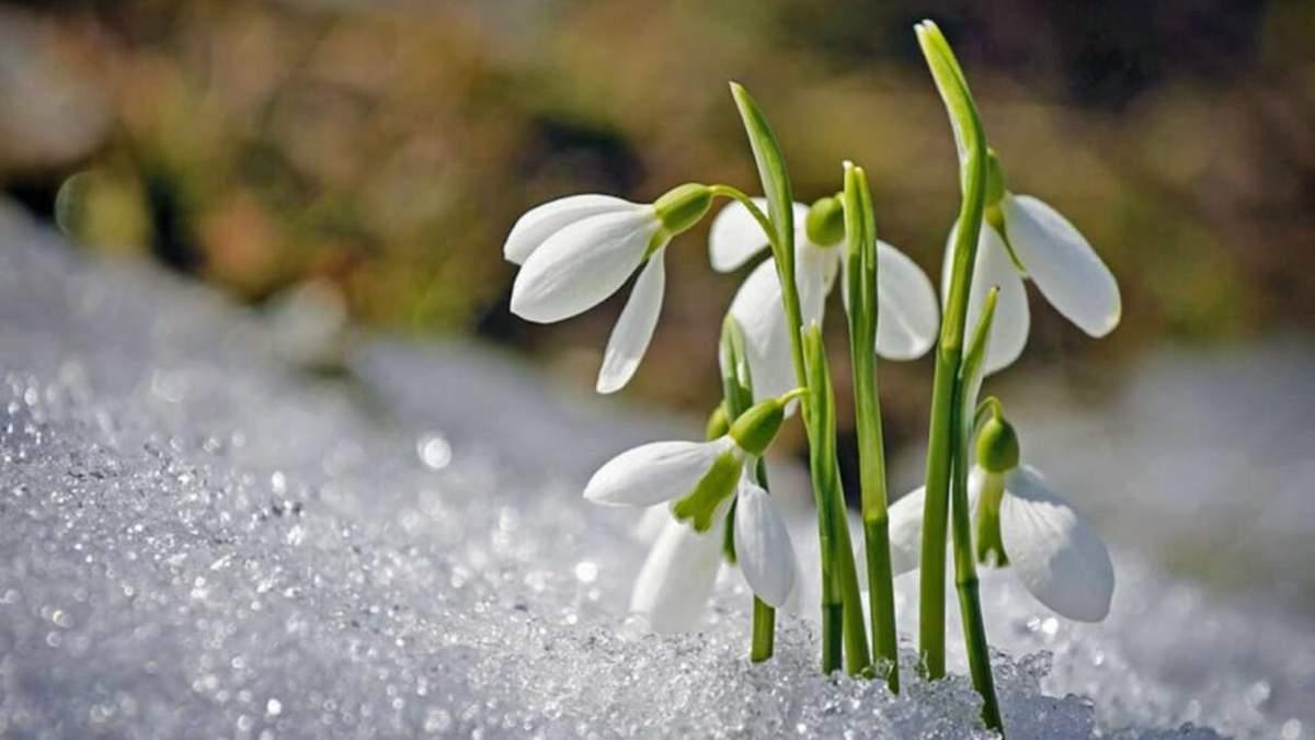 Погода 6 марта 2021: прогноз от синоптиков Украины