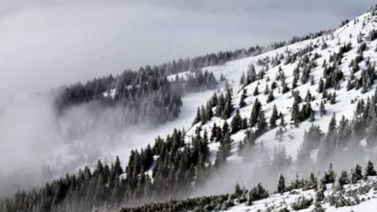 У Карпатах – загроза сходження лавин 11 березня 2021