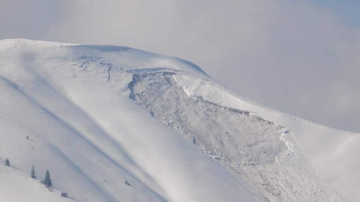 В Карпатах сошла мощная снежная лавина: впечатляющие фото