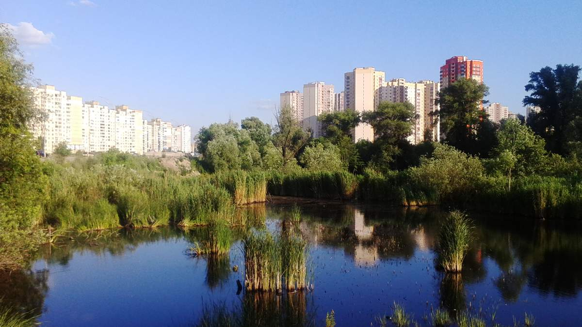 У Києві знову хочуть знищити озеро Качине
