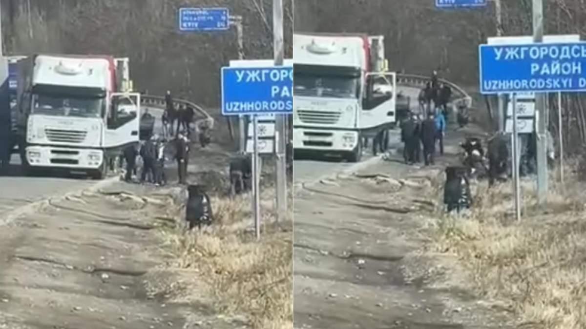 Дальнобойщики подрались возле Ужгорода из-за коррупции: видео