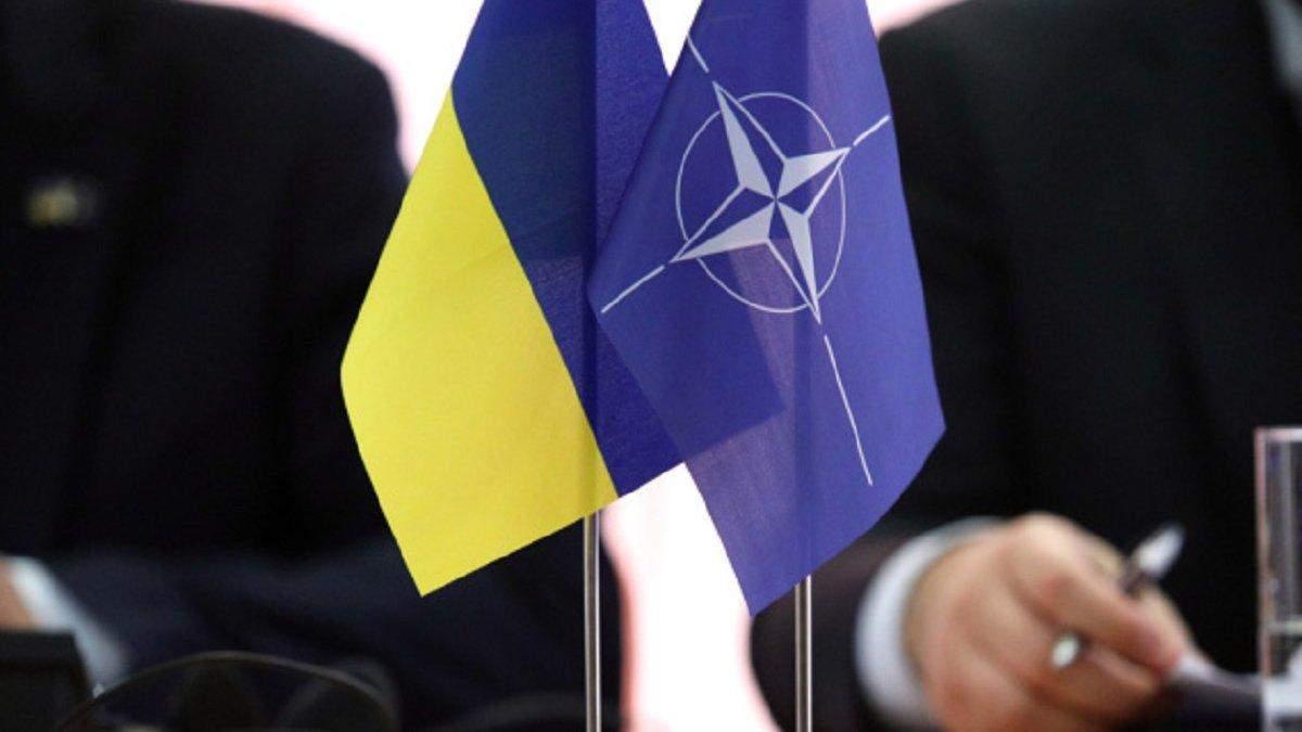Литва запропонує НАТО надати Україні ПДЧ, – глава МЗС країни