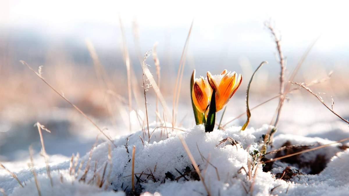 Погода в Україні на 15 квітня: знову випаде сніг