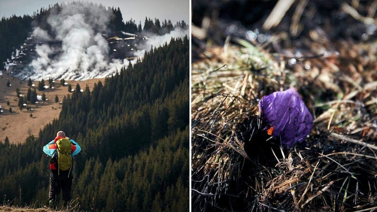 У Карпатах спалахнула пожежа на горі Кострич: фото, відео