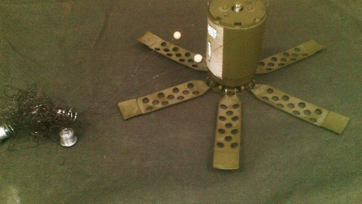 На Донбасі собака врятував військових ЗСУ від підриву на міні