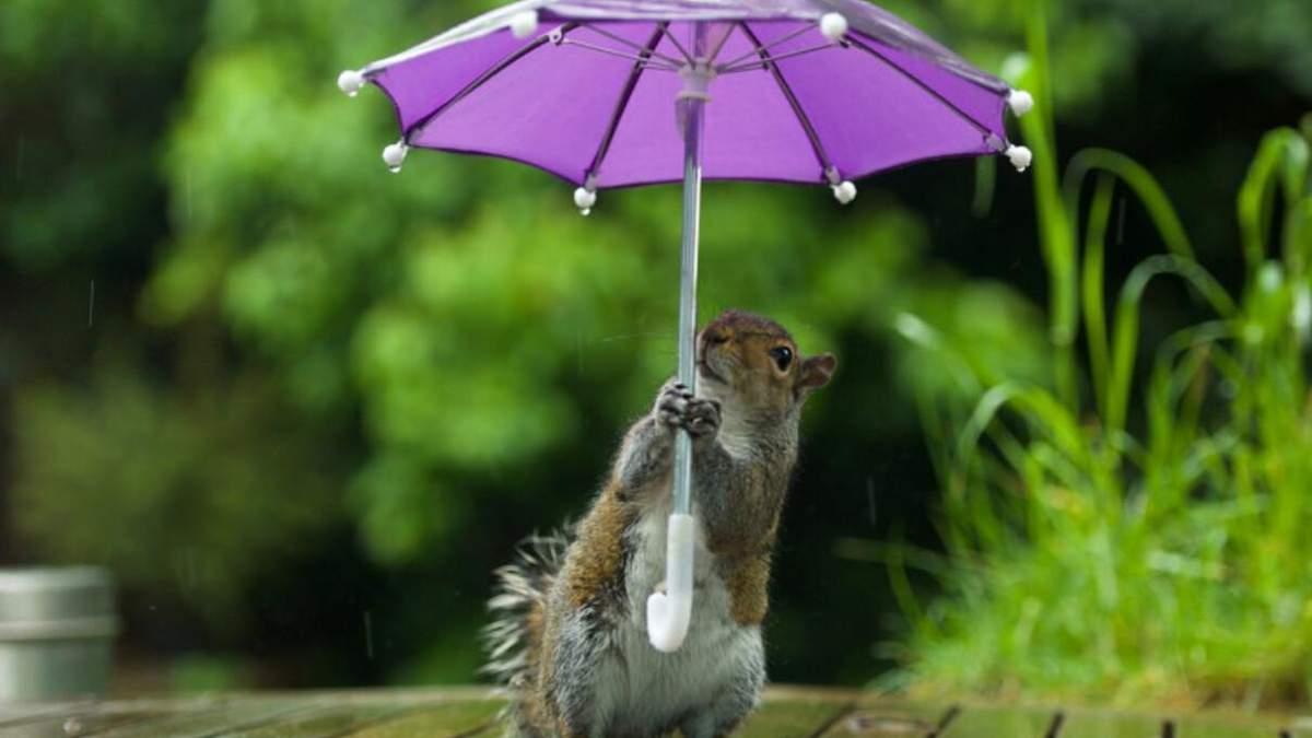 Прогноз погоди на 22 квітня: день в Україні не мине без злив та гроз
