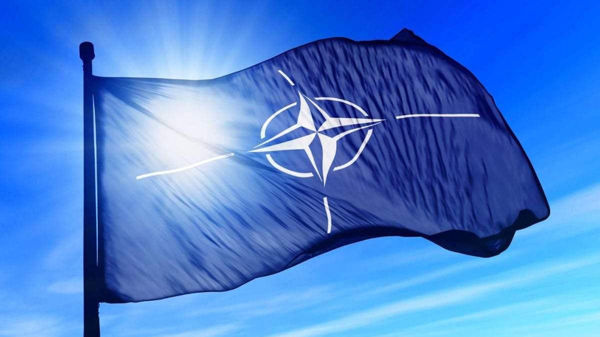 Члены НАТО не готовы к глобальной войне с Россией, – Эйдман
