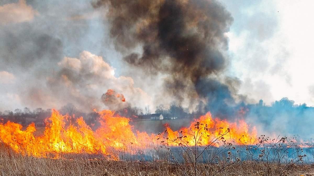 Україна потерпає від пожежної небезпеки, дощів та заморозків