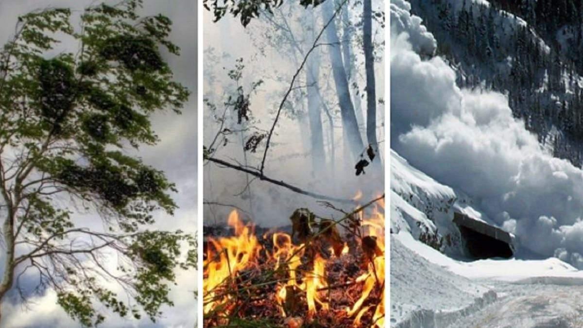 Ветер, пожарная опасность и угроза лавин: непогода 3 мая 2021
