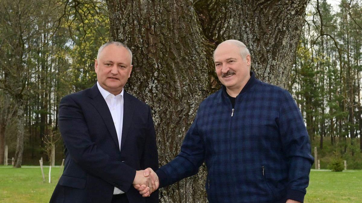 Теж підтримує страусів: Лукашенко показав Додону улюблений палац