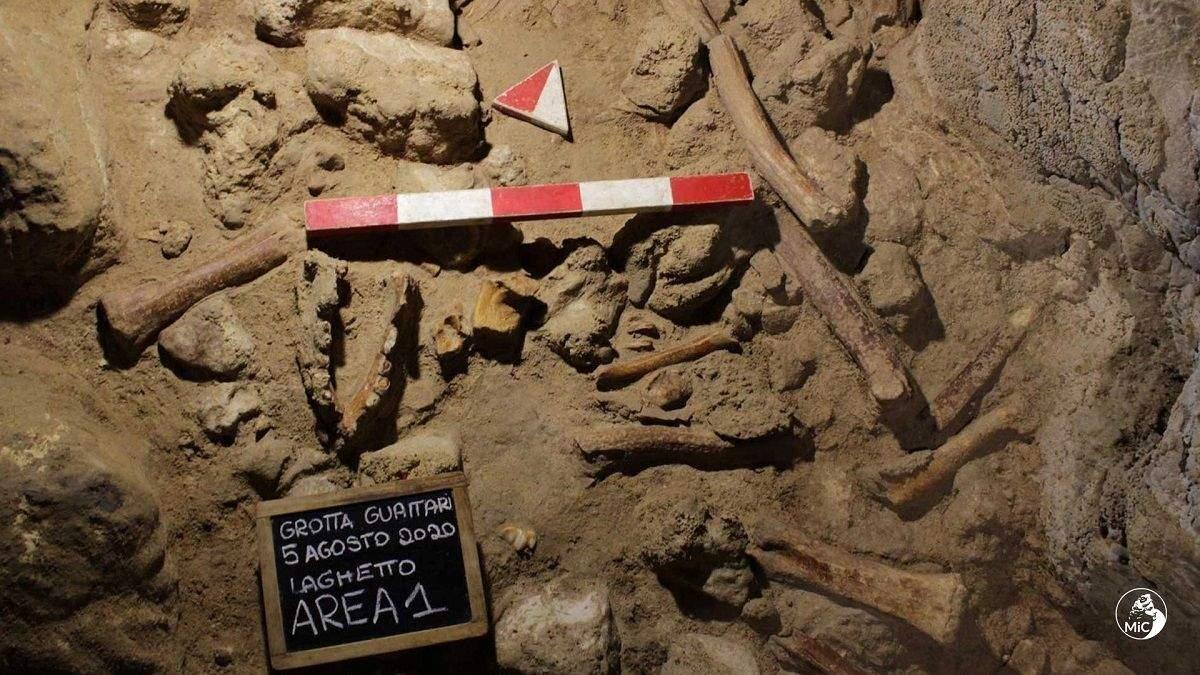 В Італії знайшли останки 9 неандертальців, їх могли вполювати гієни
