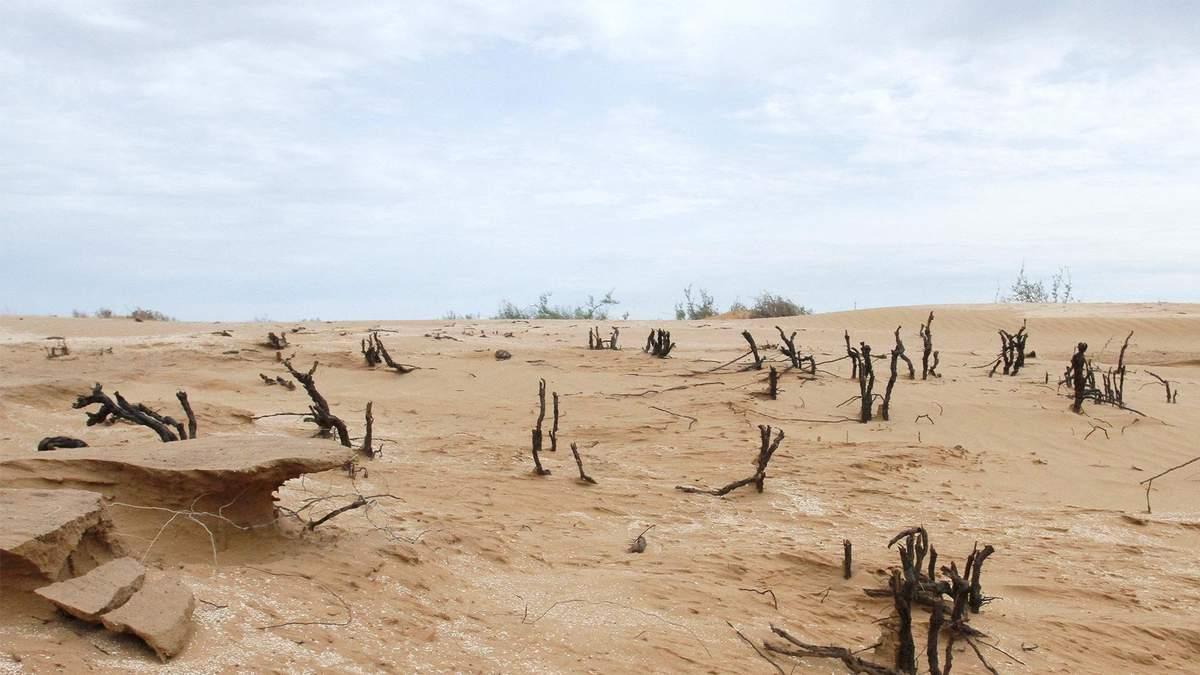 Пустеля в Калмикії