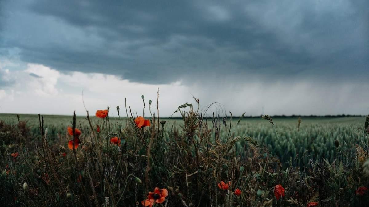 Погода 15 травня 2021: прогноз від синоптиків України