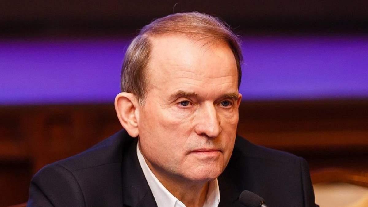 Тиск на екссуддю Гудзенко: Медведчуку вдалось привласнити нафтопровід