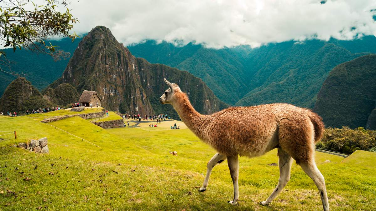 Украина расширила безвизовый режим с Перу: что изменилось