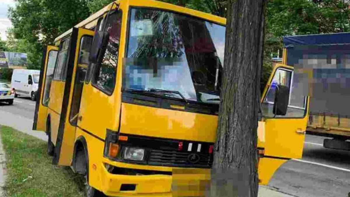 Маршрутка влетела в дерево: виновник ДТП с 5 пострадавшими выехал на рейс самовольно