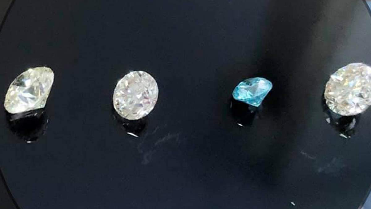 Київська митниця вилучила 61 діамант з США: фото