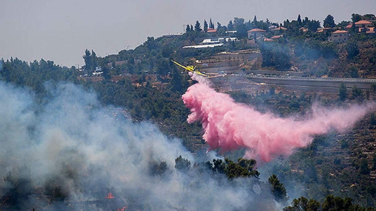 Иерусалимские горы охватили сильные пожары: фото, видео