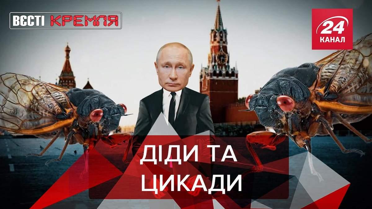 Вєсті Кремля: Пропагандисти Росії взялися за новини про атаку цикад на Байдена
