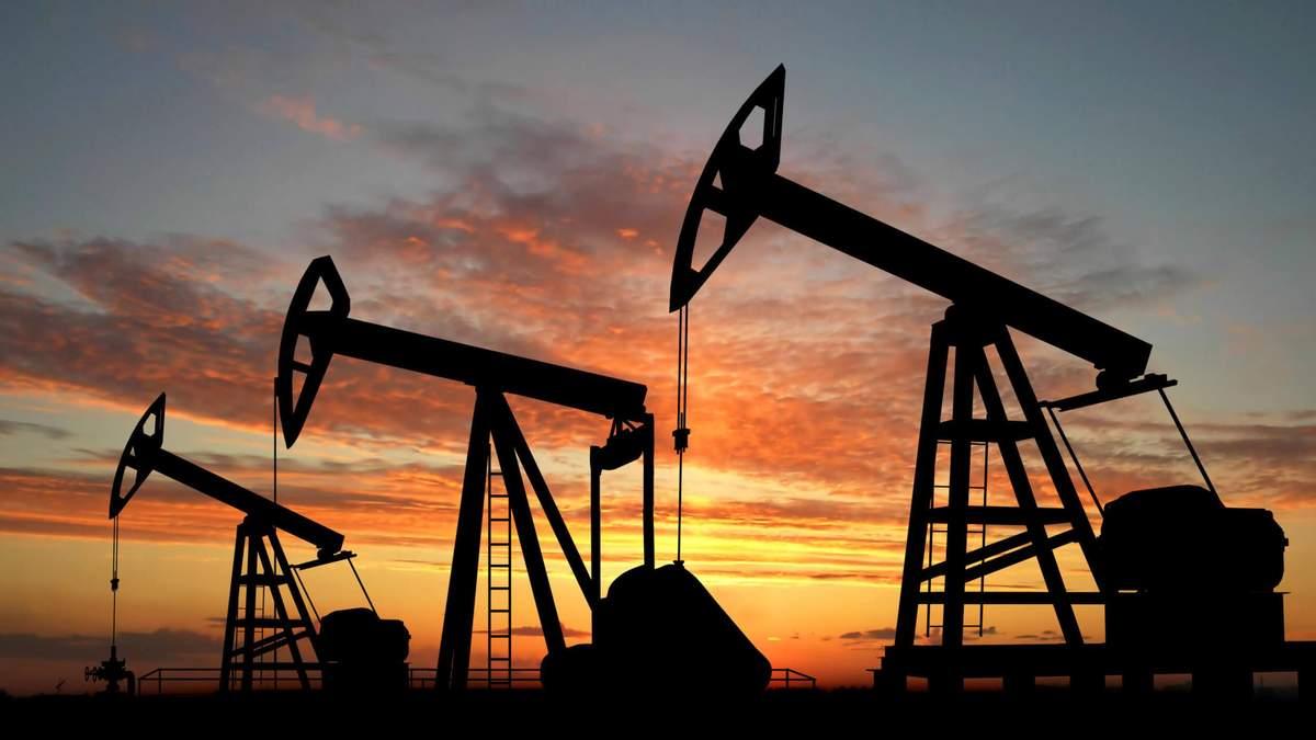 Достатньо власних родовищ– Рябцев про те, як злізти з газової голки РФ