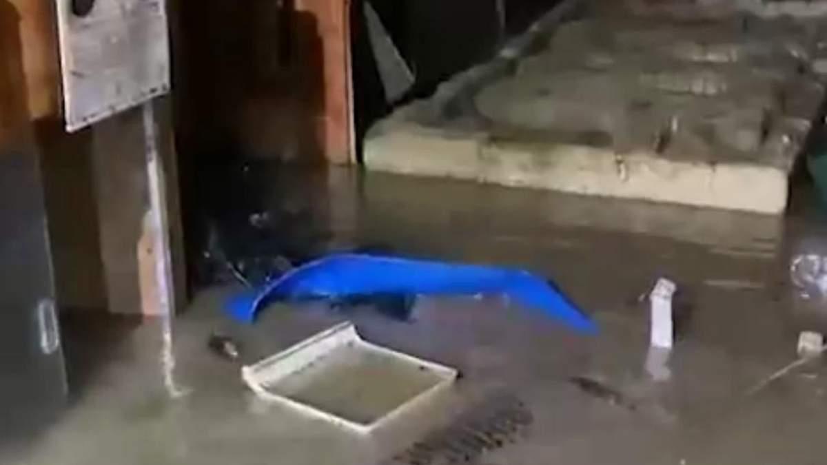 У Ялті затопило крокодиляріум: відео з місця подій