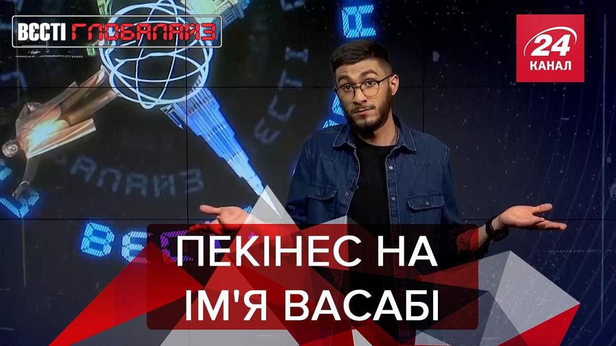 Вести Глобалайз: Пекинес Васаби победил на конкурсе
