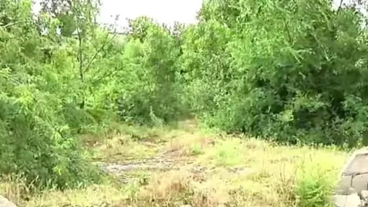 Убийство 15-летней девушки в Никополе: подозреваемый - ее сверстник