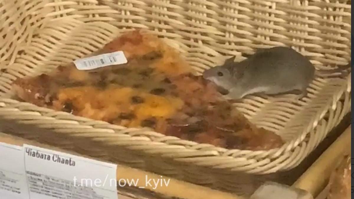 У київському супермаркеті побачили маленького пацючка