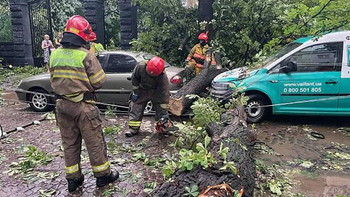 Потоп в Львове: ГСЧС рассказали о последствиях непогоды 25.06.2021