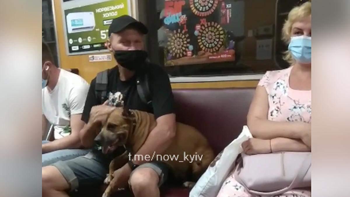 В киевском метро мужчина провозил бойцовскую собаку без намордника