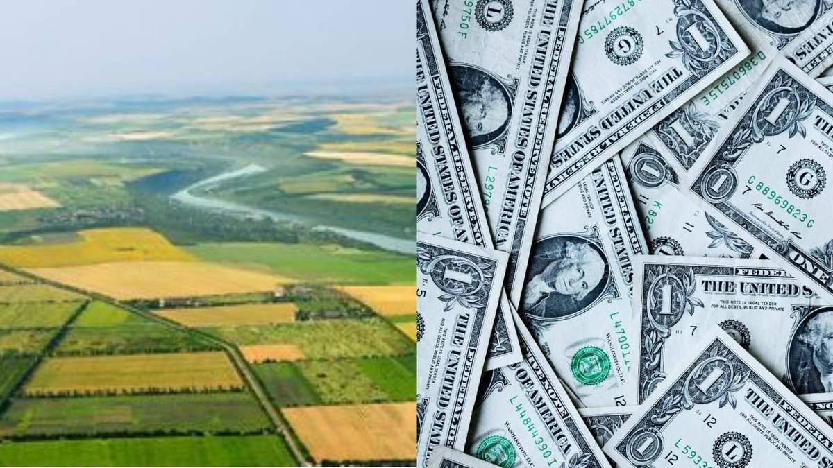 Справедливая стоимость украинской земли может составлять 5 тысяч долларов, – Ливч