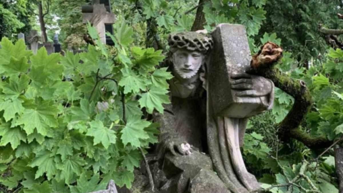 Розбились понад 100 надгробків: у Львові буревій завдав шалених збитків Личаківському кладовищу