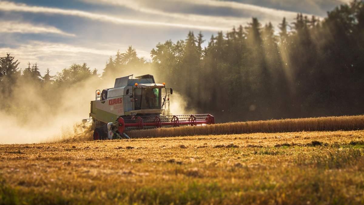 Українці зможуть вільно продавати та купувати землі сільськогосподарського призначення