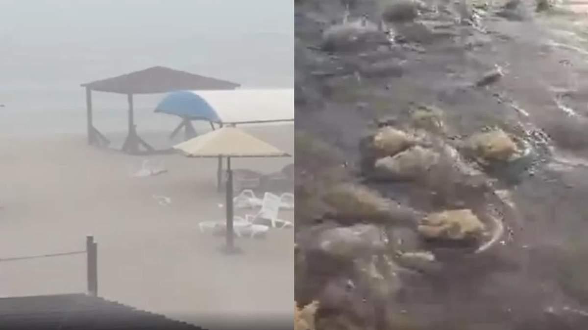 Пляжі курортного Бердянська після потужного шторму засипало медузами