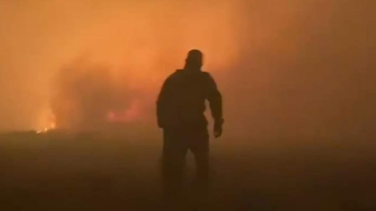 Лісові пожежі у Росії в Челябінську: відео, фото