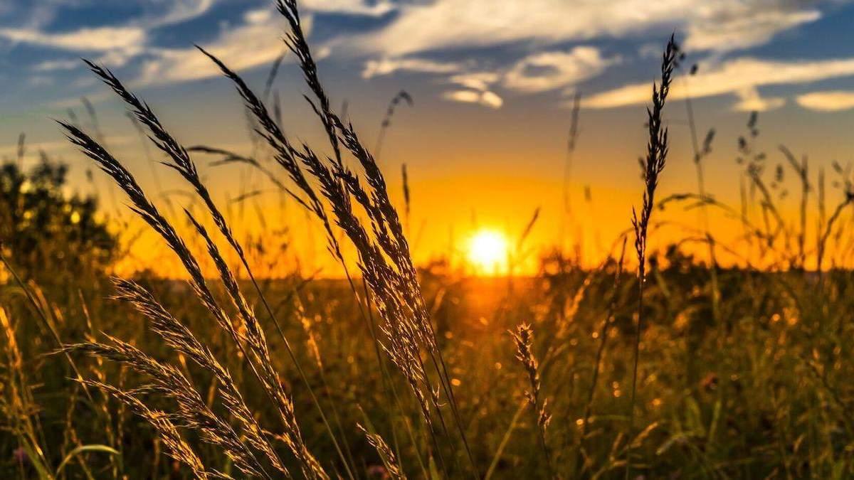 Погода 14 июля 2021: прогноз от синоптиков Украины
