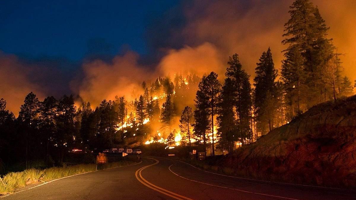 Лісові пожежі в Росії 16 липня 2021 охопили понад мільйон гектарів
