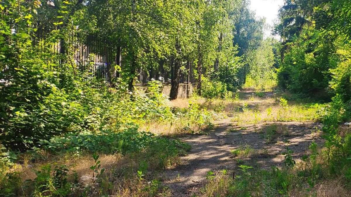 Занедбаний Донецьк після російської окупації: у мережі показали фото